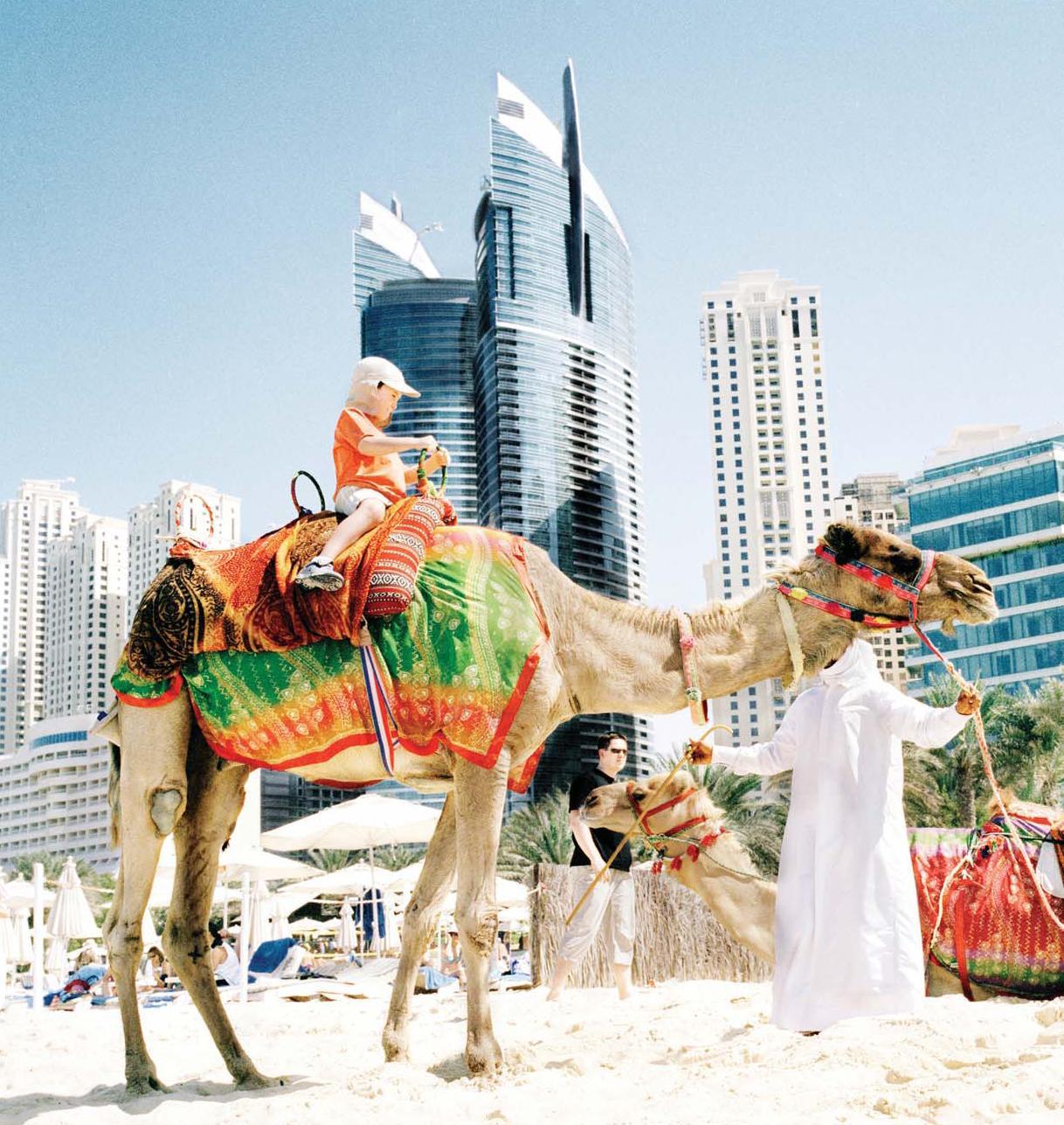 Camel Rides In Dubai Dubai | Hotelmee.com
